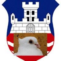 golubari-beograd
